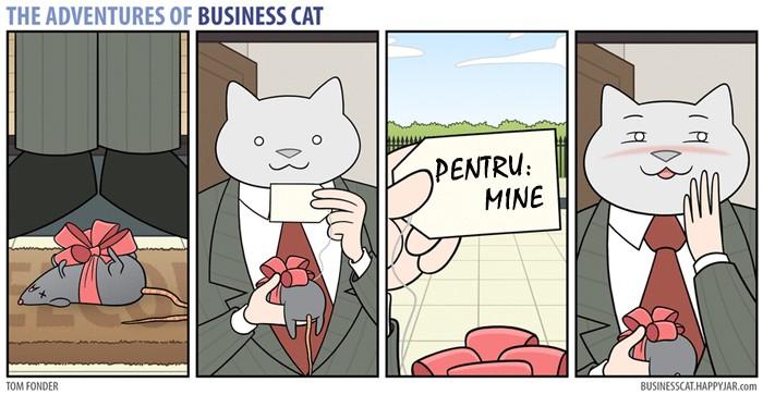 business-cat-cadou