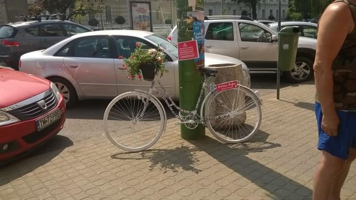 biciclete arad handsome (1)