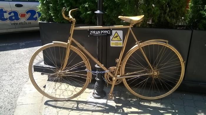 biciclete arad handsome (2)