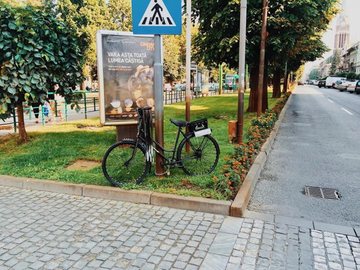 biciclete arad handsome (8)