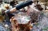 A sărăcit pădurea din Buteni de salcâmi și carpeni. L-au prins polițiștii