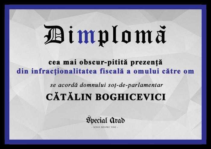 DIMPLOMA SOT-DE-PARLAMENTAR CATALIN BOGHICEVICI