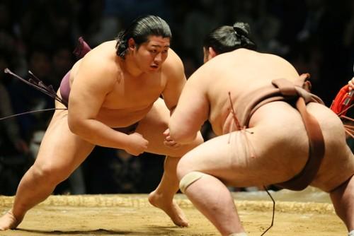 sumo-wrestling
