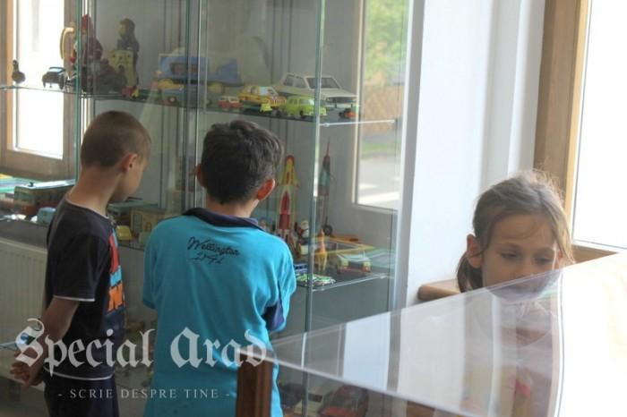 muzeul jucariilor la arad (60)