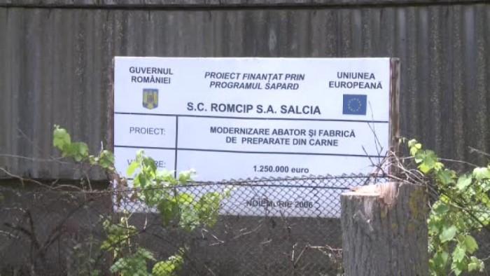 Ferma de porci Salcia / Foto: frip.ro