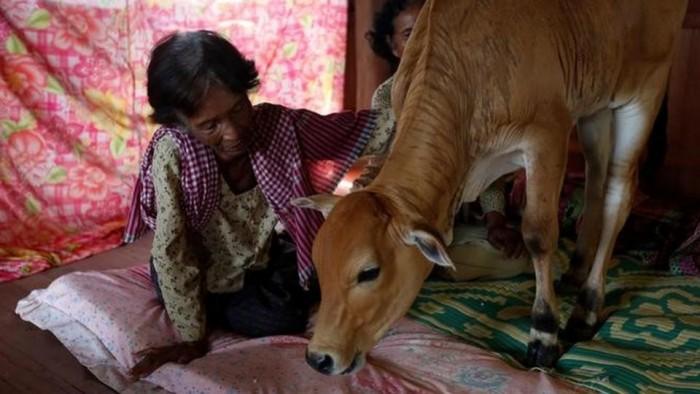reborn-husband-kratie-province-cambodia-believes-bedroom_dc572420-6dd6-11e7-90b5-ba41537c464e