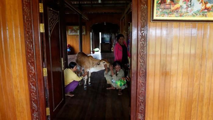 relatives-province-cambodia-kratie-believe-inside-patriarch_dd856d52-6dd6-11e7-90b5-ba41537c464e