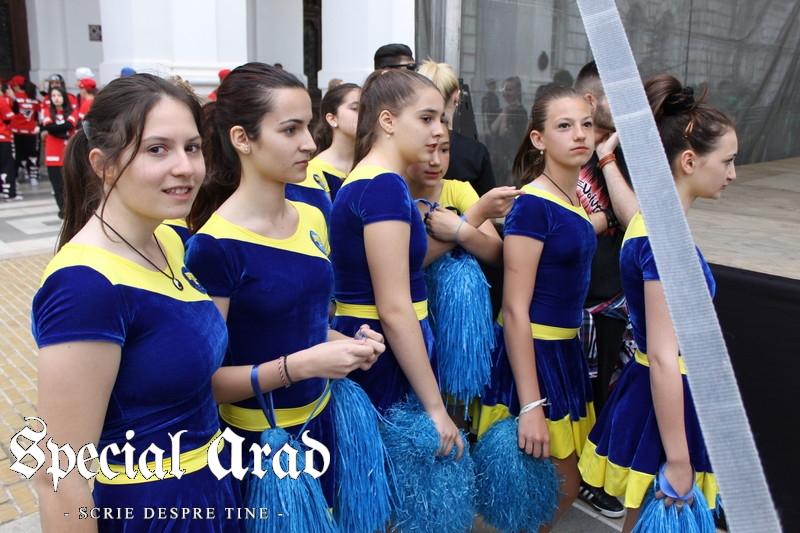 ziua internationala a dansului arad 2014 (1)