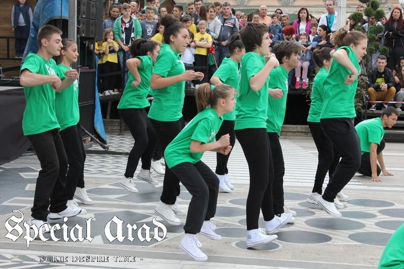 ziua internationala a dansului arad 2014 (10)
