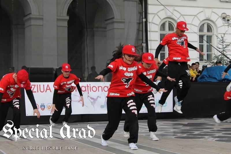 ziua internationala a dansului arad 2014 (100)