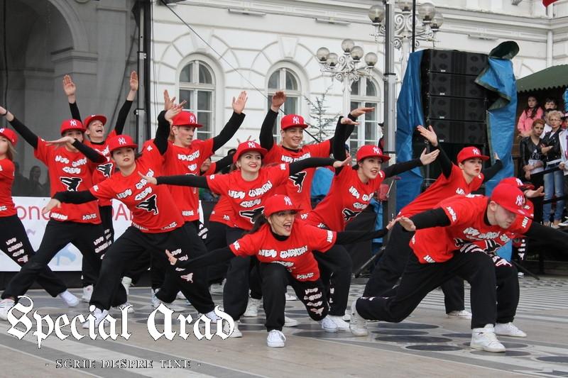 ziua internationala a dansului arad 2014 (101)