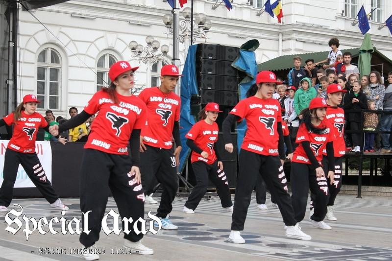 ziua internationala a dansului arad 2014 (102)