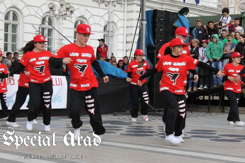 ziua internationala a dansului arad 2014 (103)