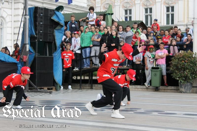 ziua internationala a dansului arad 2014 (105)