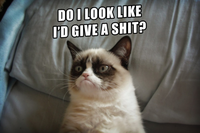 grumpy_cat_doesn__t_care_at_all_by_cthulhu1976-d5nkzf9