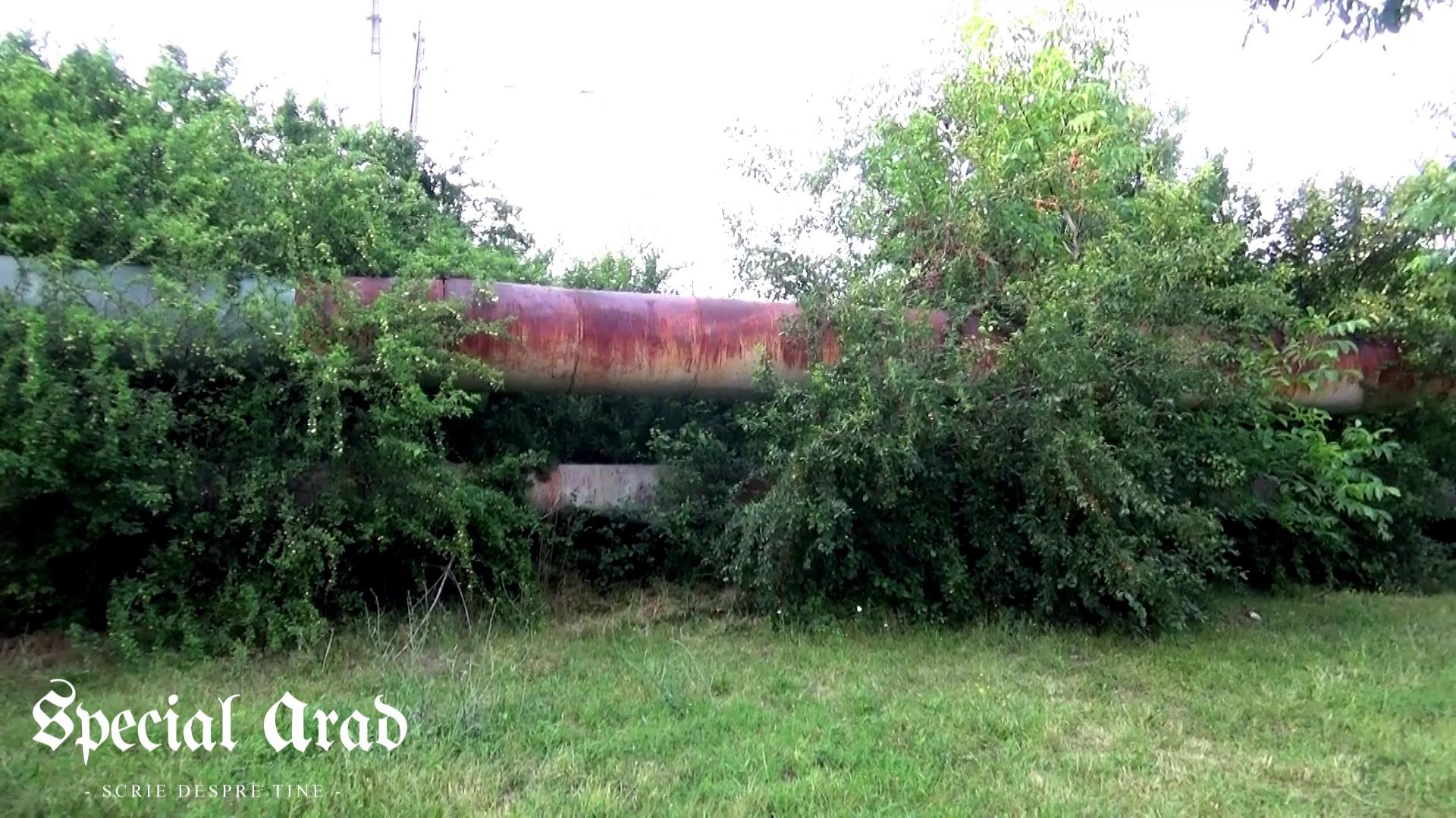 vlcsnap-2014-06-26-22h21m43s49