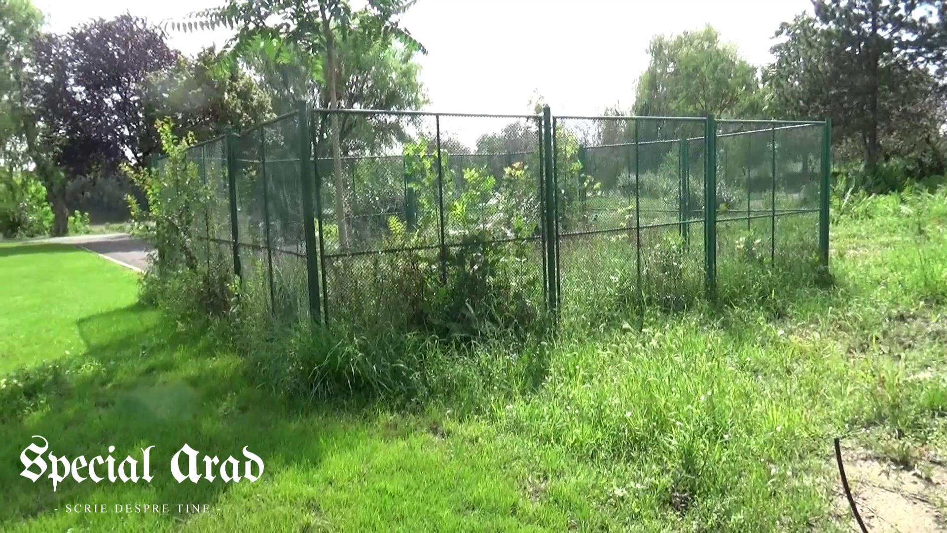 vlcsnap-2014-08-09-02h31m37s3