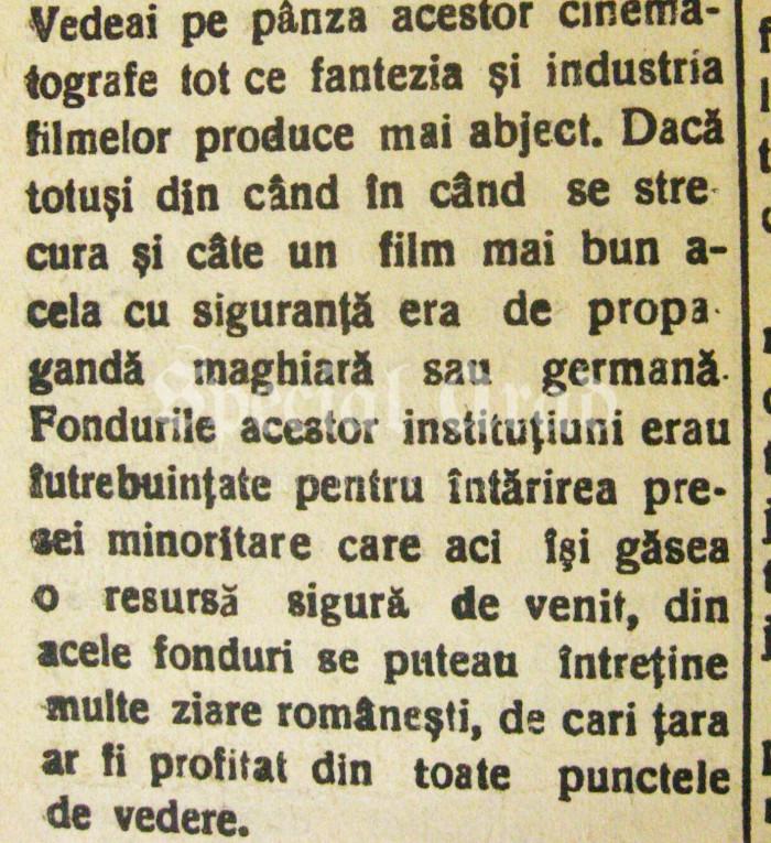 IMG_1950