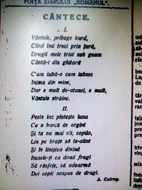 poezie, arad, Românul, Aron Cotruș