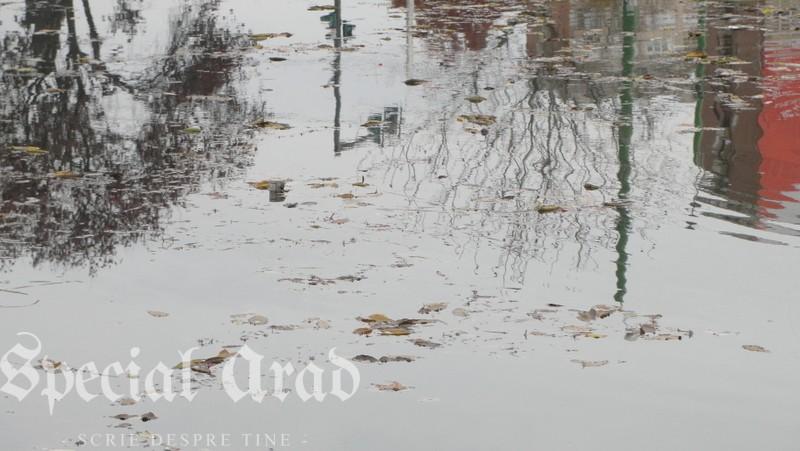 lacul padurice ca o apa cristalina (13)