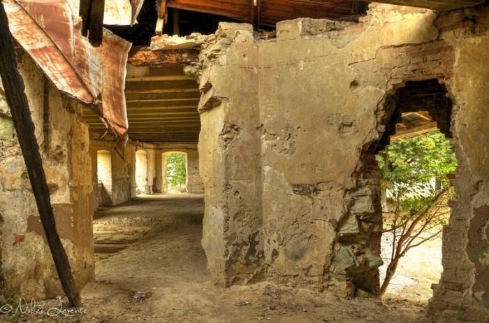 manastirea cluj6