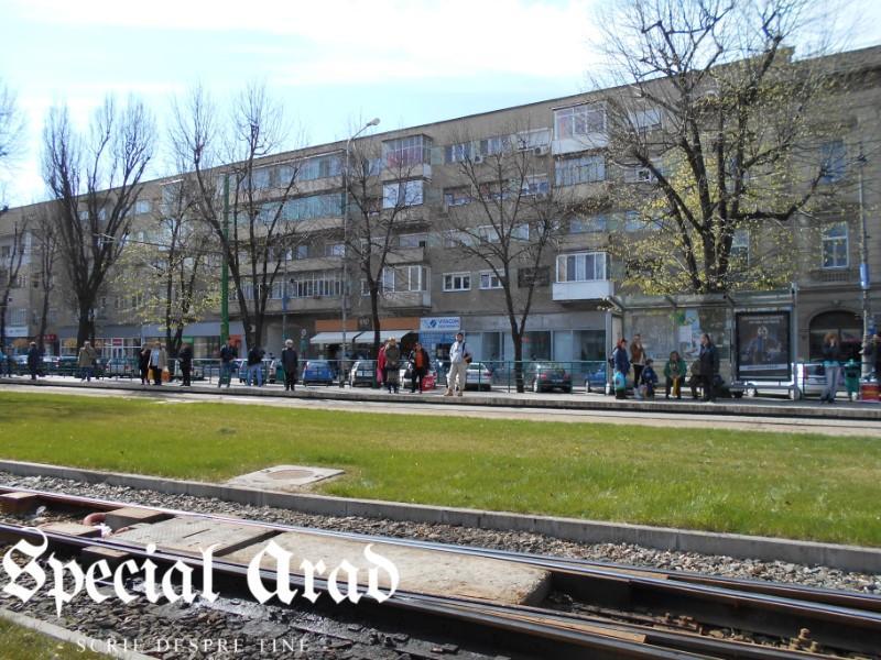 tramvai deraiat podgoria (12)