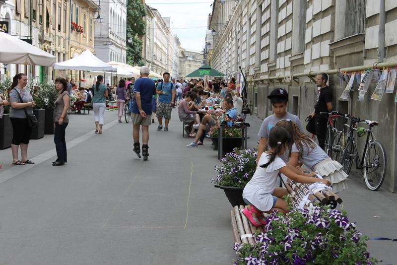 Street Delivery la Timisoara 2014 (104)