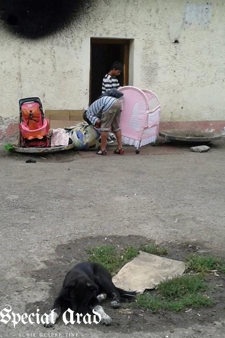 evacuare boschetari podgoria (10)