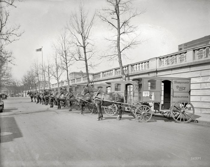 07-Carts-for-transporting-dairy-Thompson-Washington-1927-