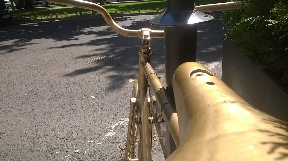 biciclete arad handsome (4)