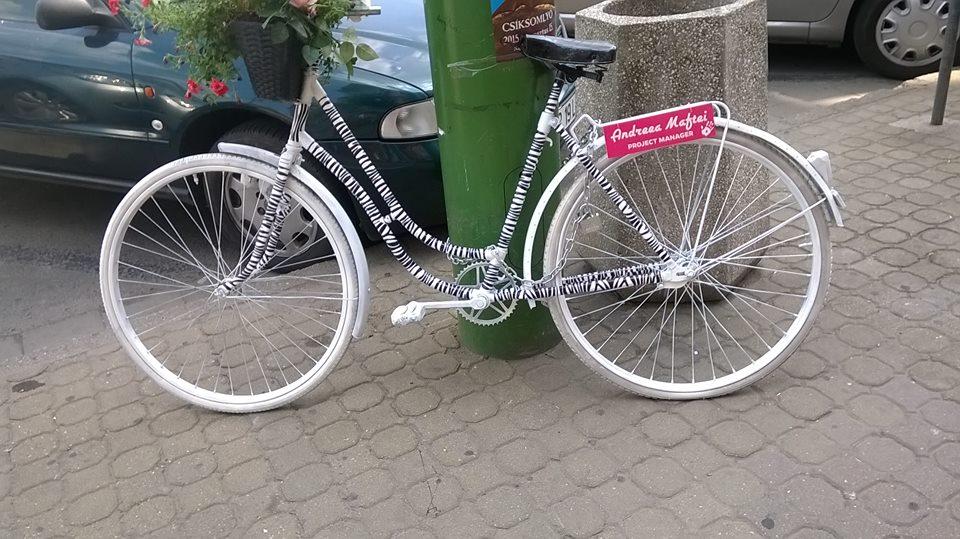biciclete arad handsome (6)
