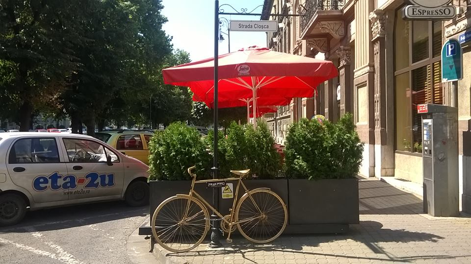 biciclete arad handsome (7)