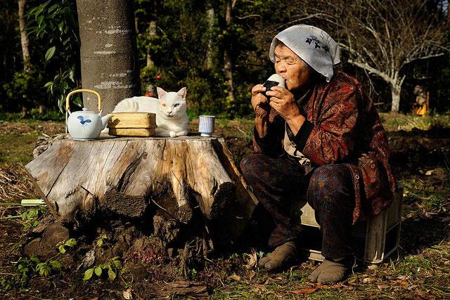 pisica-cu-cei-mai-ciudati-ochi12