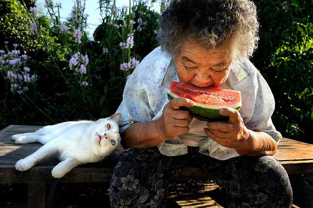 pisica-cu-cei-mai-ciudati-ochi15