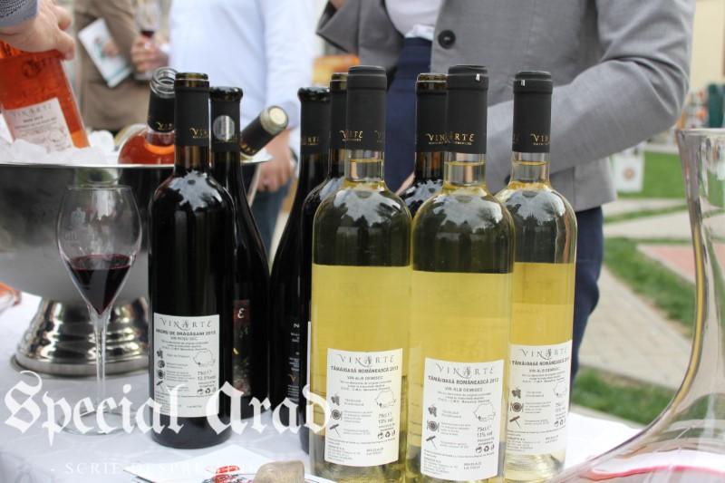 clubul degustatorilor de vin neautorizati expozitie de vin centrul de cultura (15)
