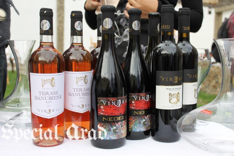 clubul degustatorilor de vin neautorizati expozitie de vin centrul de cultura (16)
