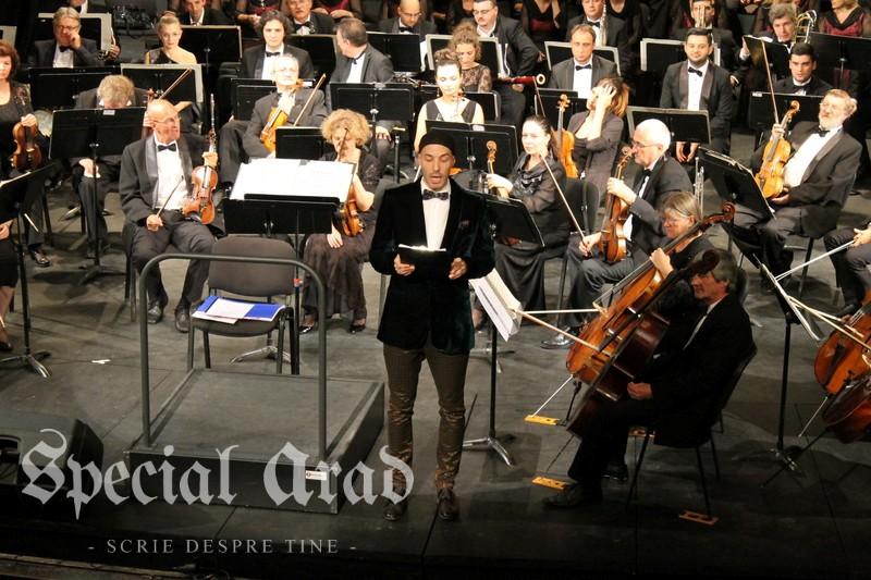 concurs canto alexandru farcas (11)