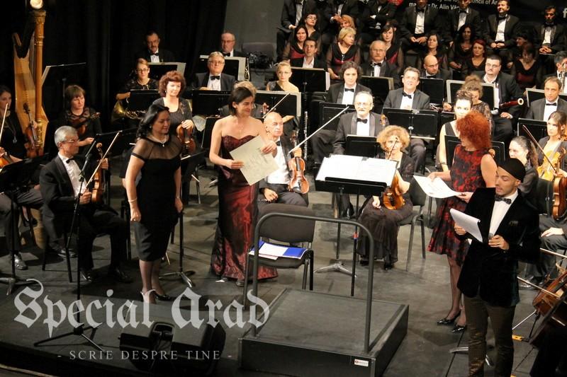 concurs canto alexandru farcas (15)