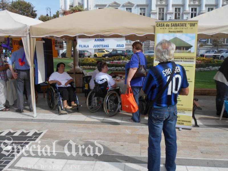 targ ONG Arad 2015 (10)