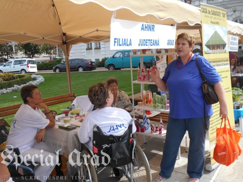 targ ONG Arad 2015 (15)