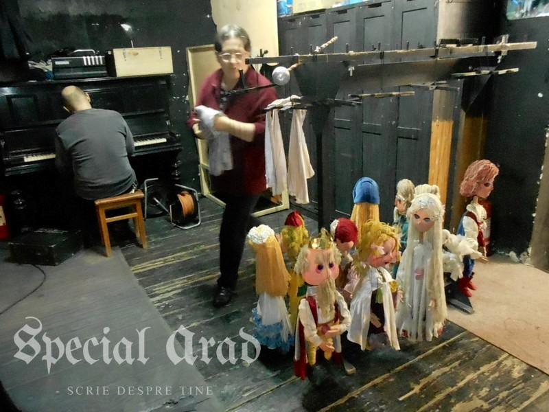 interviu carmen marginean teatru de marionete (10)