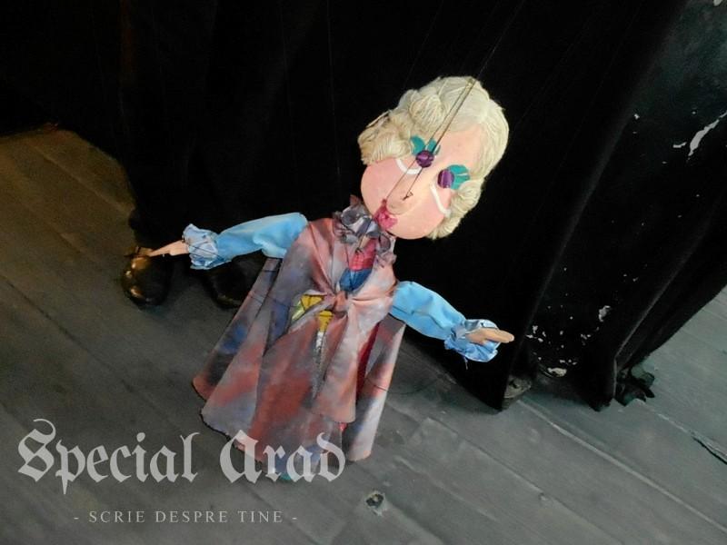 interviu carmen marginean teatru de marionete (15)