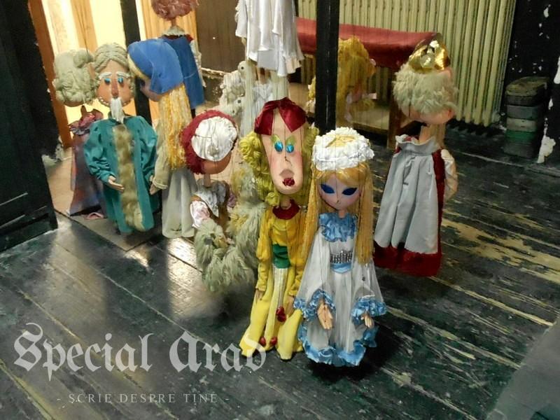 interviu carmen marginean teatru de marionete (16)