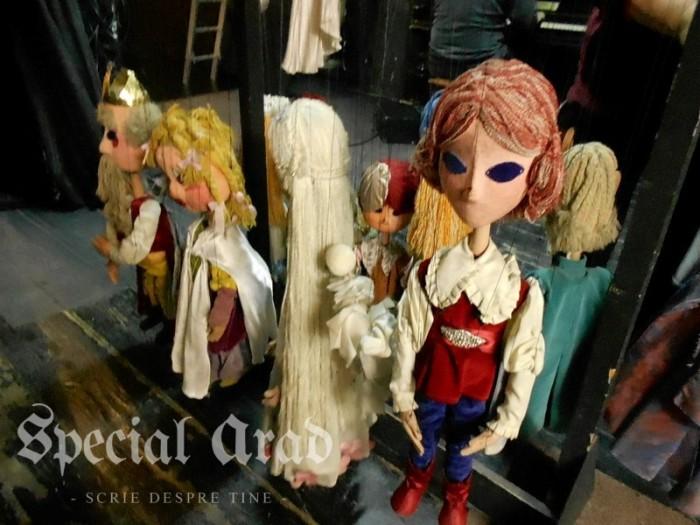 interviu carmen marginean teatru de marionete (2)