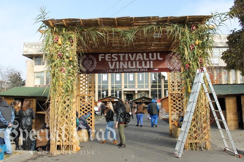 festivalul vinului pregatiti 2015 (3)