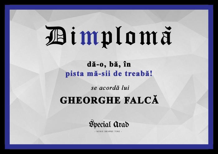 DIMPLOMA FALCA PISTA MA-SII