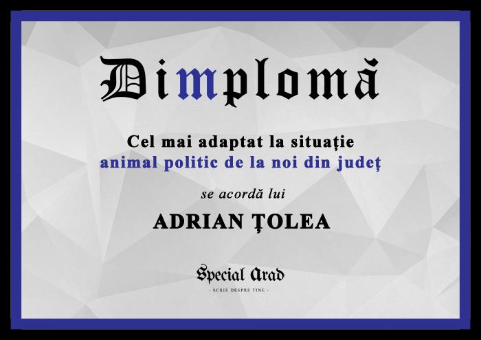 DIMPLOMA TZOLEA