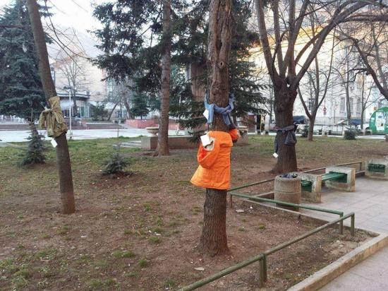 au-iesit-pe-strada-si-au-vazut-ceva-uimitor-de-ce-erau-toti-copacii-imbracati-cu-haine-353991