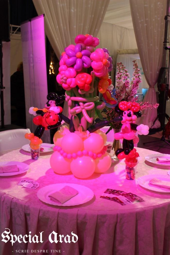 targ de nunti expo arad 2016 (19)