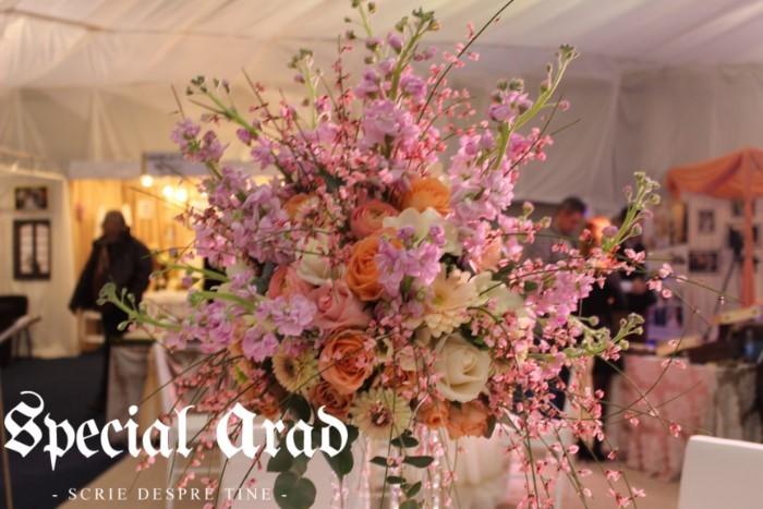 targ de nunti expo arad 2016 (39)